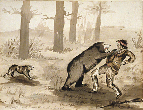 A_rough_and_tumble_with_a_grizzley