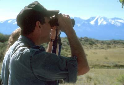 viewing wildlife with binoculars