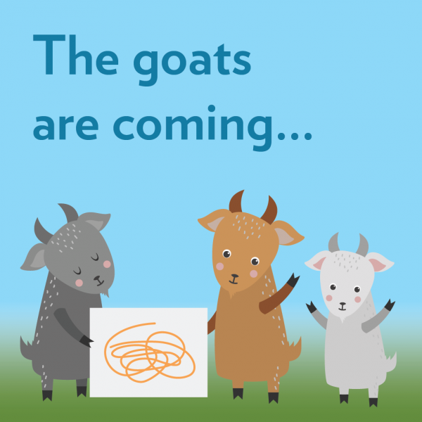 The goats are coming... to Anythink in June